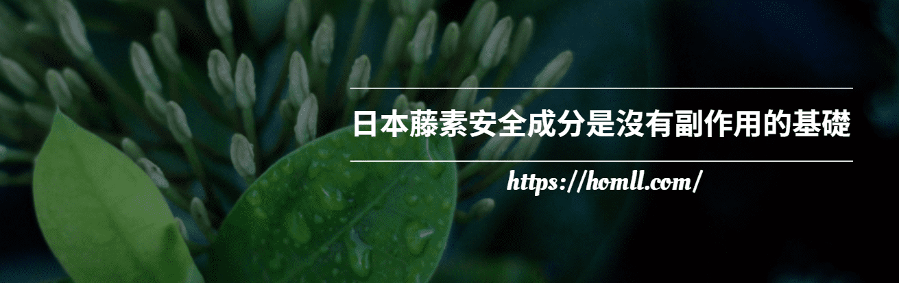 日本藤素安全成分是沒有副作用的基礎